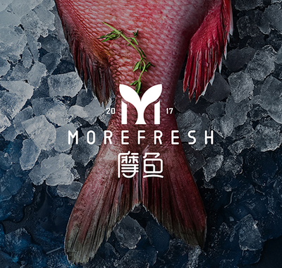摩鱼| MOREFRESH  |   LOGO设计